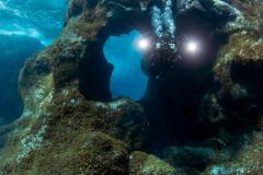plongeur arche