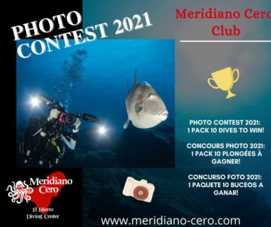 pub photo contest 2021